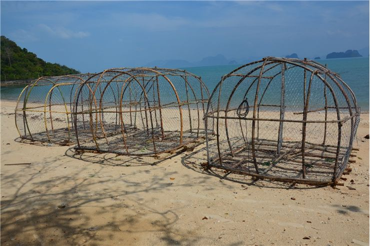 Picture Of Fish Traps