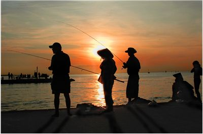 Picture Of Fishing Dusk