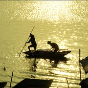 Picture Of Fishing From The Boat