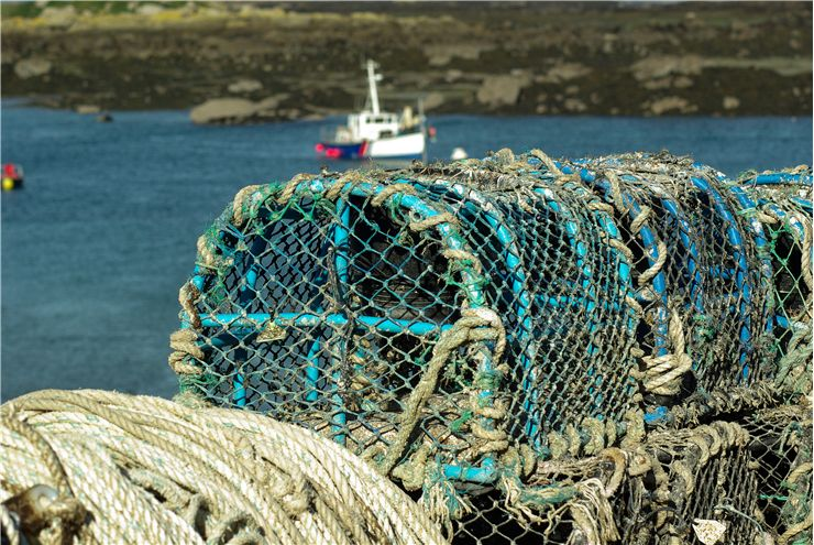 Picture Of Fishing Normandy Chausey Islands