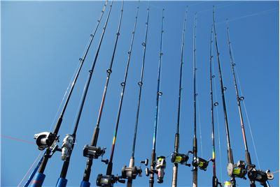 Picture Of Fishing Rods And Reels