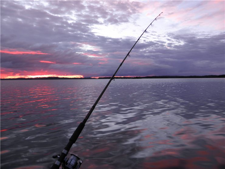 Picture Of Fishing Sport