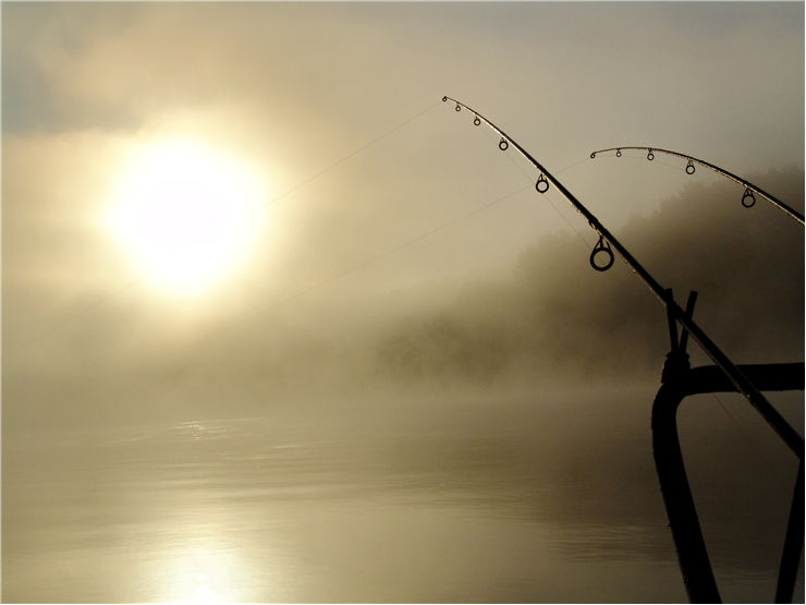 Picture Of Fishing Summer
